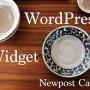 WordPressでテーマの任意の位置にウィジェットエリアを追加する方法とこのブログでの活用事例 featuring 「Newpost Catch」